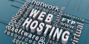 professional web hosting